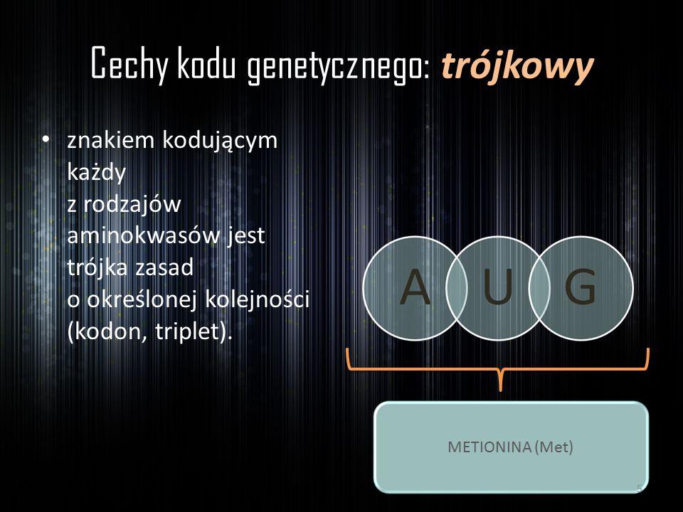 Cechy kodu genetycznego: trójkowy znakiem kodującym każdy z rodzajów aminokwasów jest trójka zasad o określonej kolejności (kodon, triplet). METIONINA