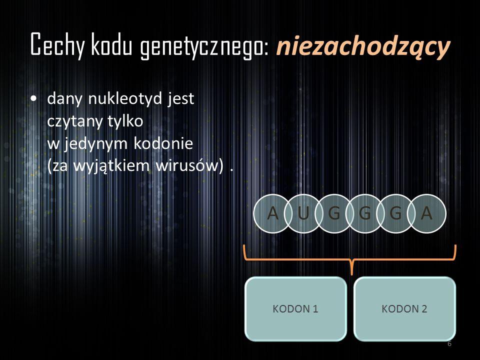 Cechy kodu genetycznego: niezachodzący dany nukleotyd jest czytany tylko w jedynym kodonie (za wyjątkiem wirusów). KODON 1KODON 2 6