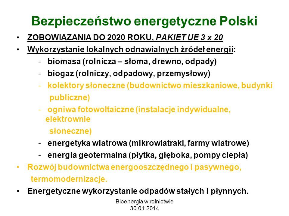 Bezpieczeństwo energetyczne Polski ZOBOWIĄZANIA DO 2020 ROKU, PAKIET UE 3 x 20 Wykorzystanie lokalnych odnawialnych źródeł energii: - biomasa (rolnicz