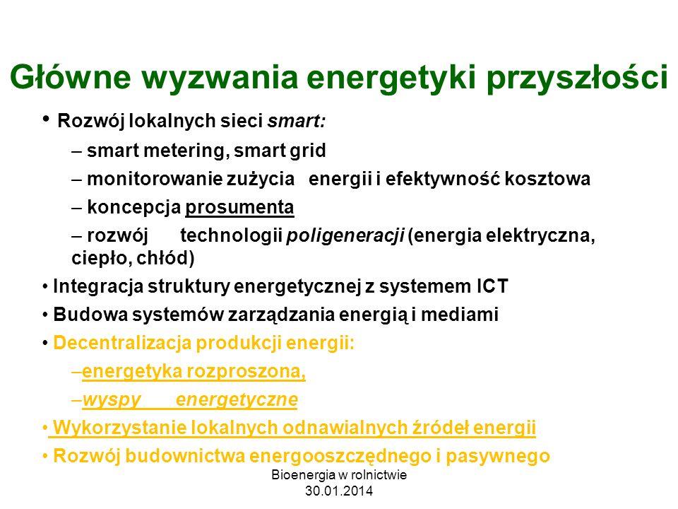 Główne wyzwania energetyki przyszłości Rozwój lokalnych sieci smart: – smart metering, smart grid – monitorowanie zużycia energii i efektywność koszto