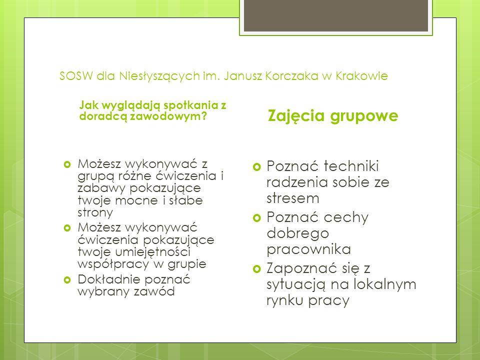SOSW dla Niesłyszących im. Janusz Korczaka w Krakowie Jak wyglądają spotkania z doradcą zawodowym.