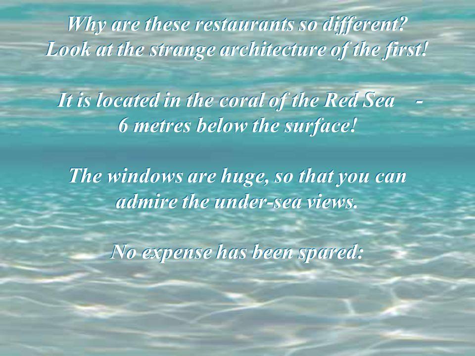 Jaka jest róznica między restauracjami.Przypatrz się niepowtarzalnej architekturze wnętrza.