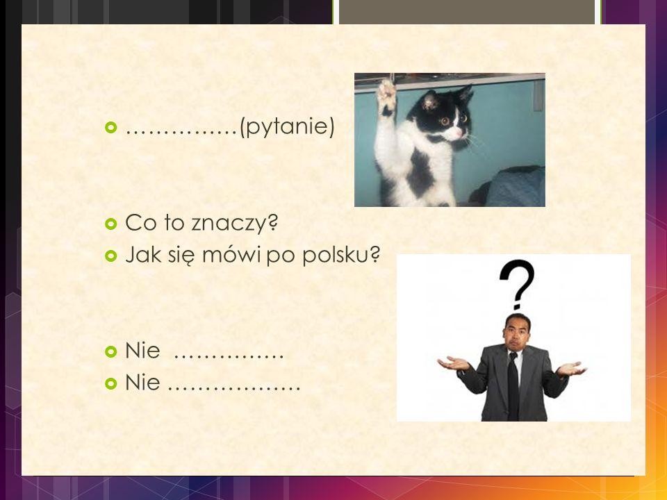  ……………(pytanie)  Co to znaczy?  Jak się mówi po polsku?  Nie ……………  Nie ………………