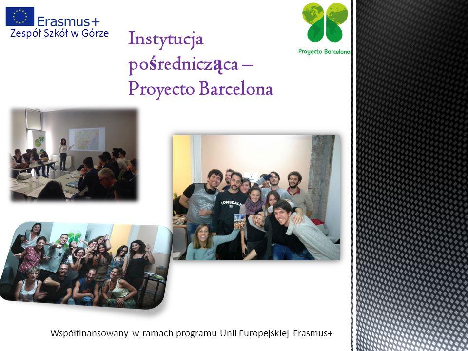 Współfinansowany w ramach programu Unii Europejskiej Erasmus+ Zespół Szkół w Górze Szkolenie
