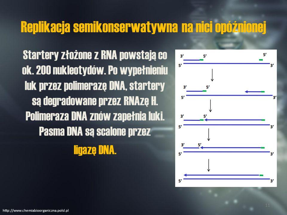 Rodzaje replikacji http://www.e-biotechnologia.pl 12