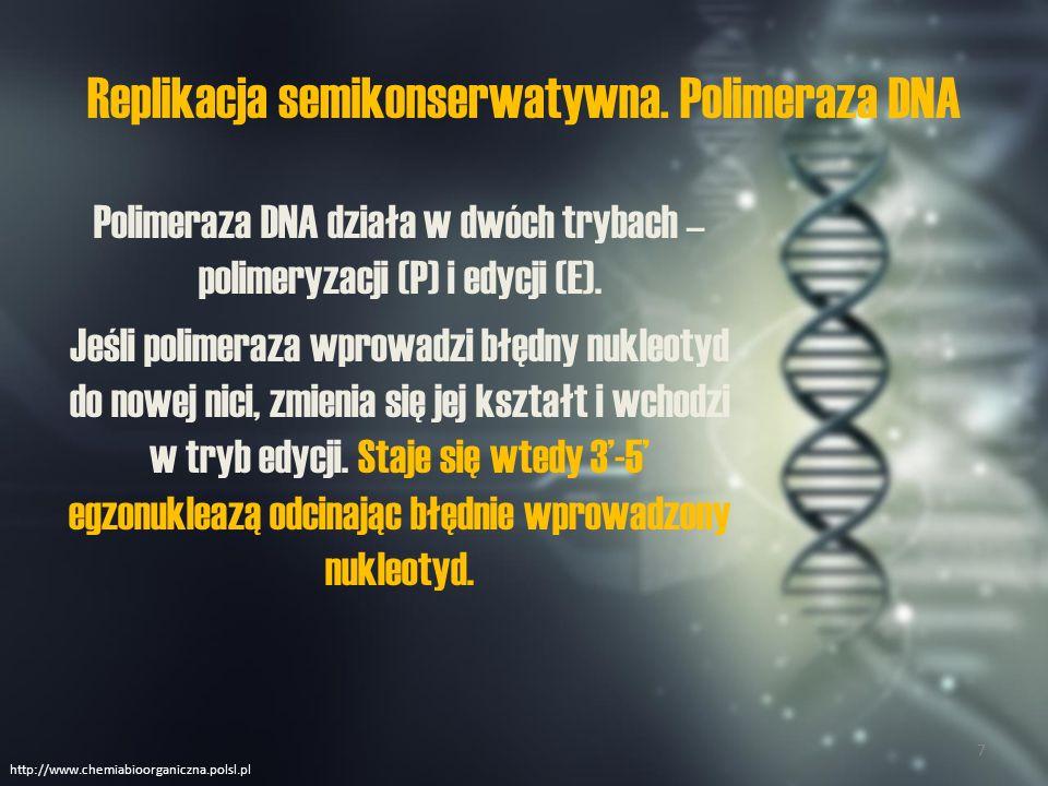 Replikacja semikonserwatywna Polimeraza DNA nie jest w stanie rozpocząć syntezy komplementarnej nici od nowa.