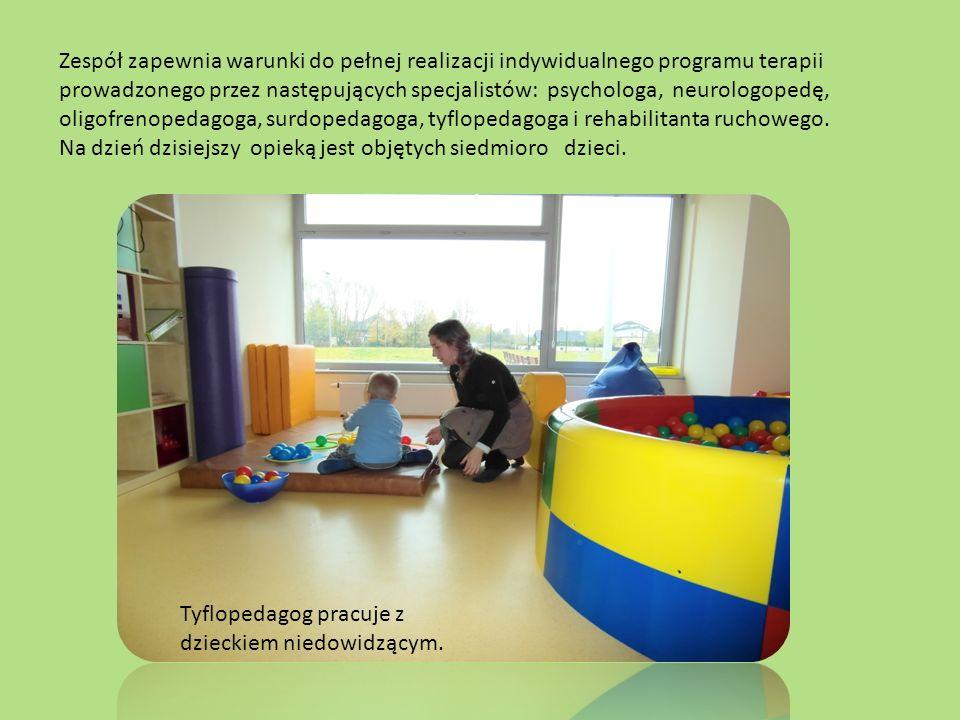 Zespół zapewnia warunki do pełnej realizacji indywidualnego programu terapii prowadzonego przez następujących specjalistów: psychologa, neurologopedę, oligofrenopedagoga, surdopedagoga, tyflopedagoga i rehabilitanta ruchowego.
