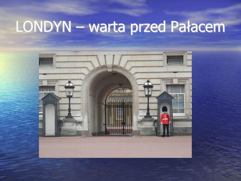 LONDYN – warta przed Pałacem