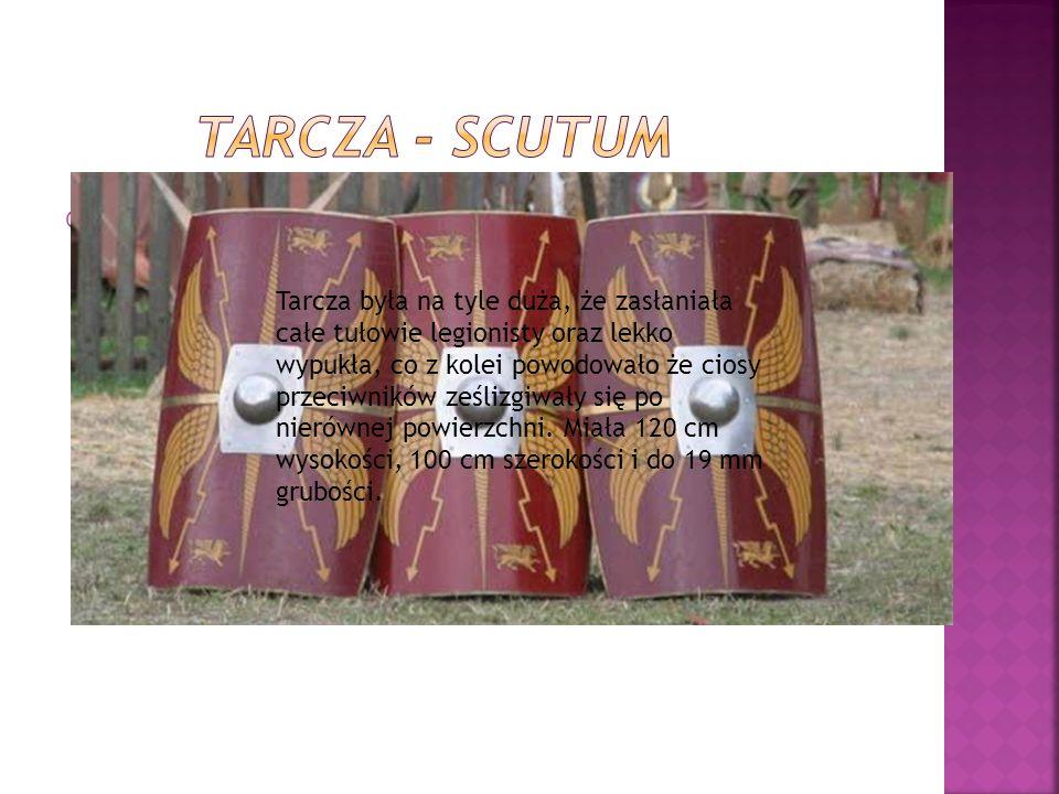  Tarcza była na tyle duża, że zasłaniała całe tułowie legionisty oraz lekko wypukła, co z kolei powodowało że ciosy przeciwników ześlizgiwały się po nierównej powierzchni.