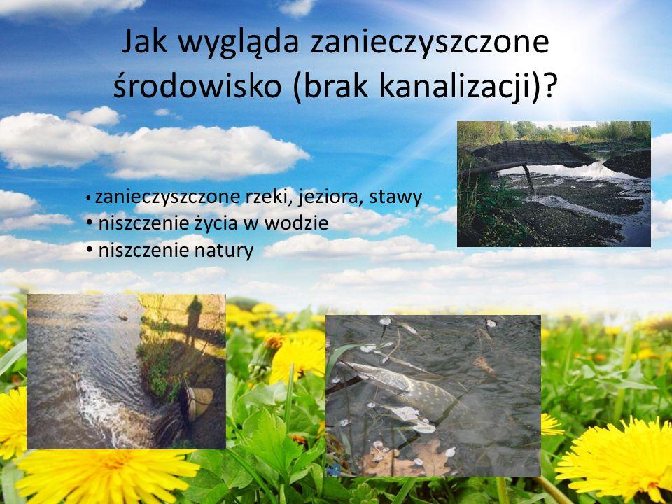 Jak wygląda zanieczyszczone środowisko (brak kanalizacji)? zanieczyszczone rzeki, jeziora, stawy niszczenie życia w wodzie niszczenie natury