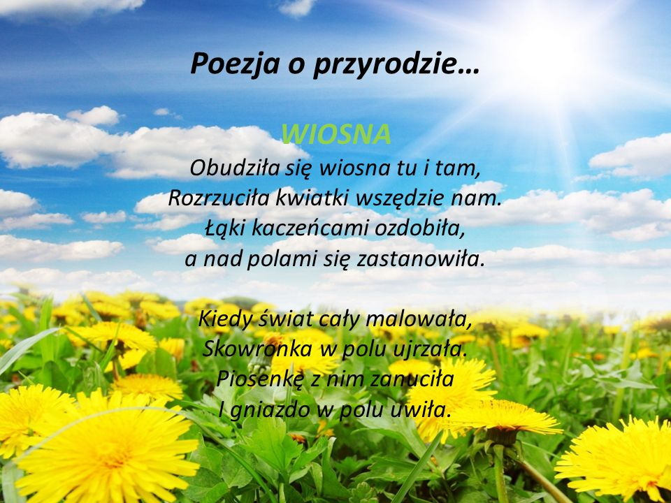Poezja o przyrodzie… WIOSNA Obudziła się wiosna tu i tam, Rozrzuciła kwiatki wszędzie nam. Łąki kaczeńcami ozdobiła, a nad polami się zastanowiła. Kie