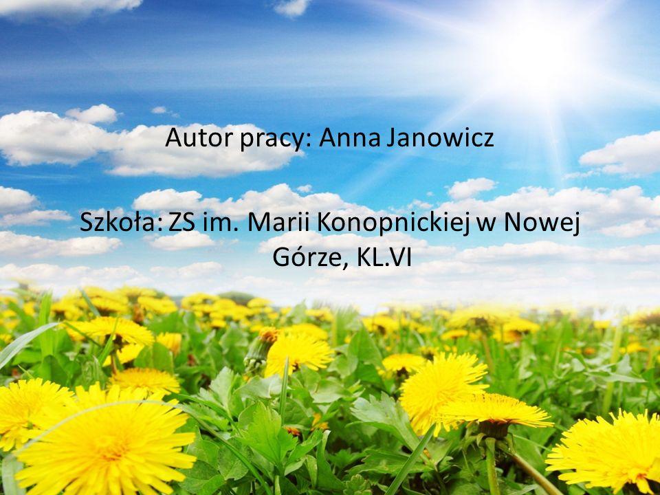Autor pracy: Anna Janowicz Szkoła: ZS im. Marii Konopnickiej w Nowej Górze, KL.VI