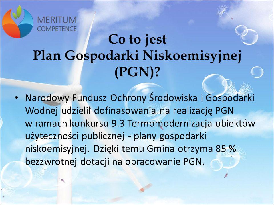 Do czego jest potrzebny Plan Gospodarki Niskoemisyjnej (PGN).