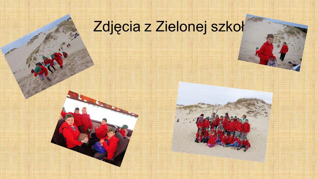 Zdjęcia z Zielonej szkoły