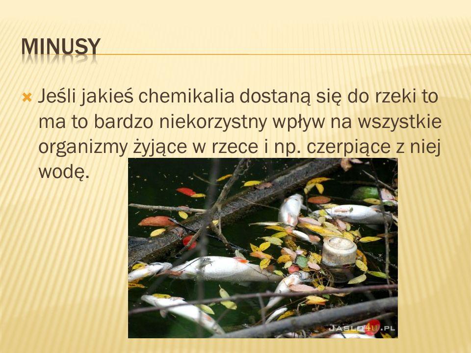  Jeśli jakieś chemikalia dostaną się do rzeki to ma to bardzo niekorzystny wpływ na wszystkie organizmy żyjące w rzece i np. czerpiące z niej wodę.