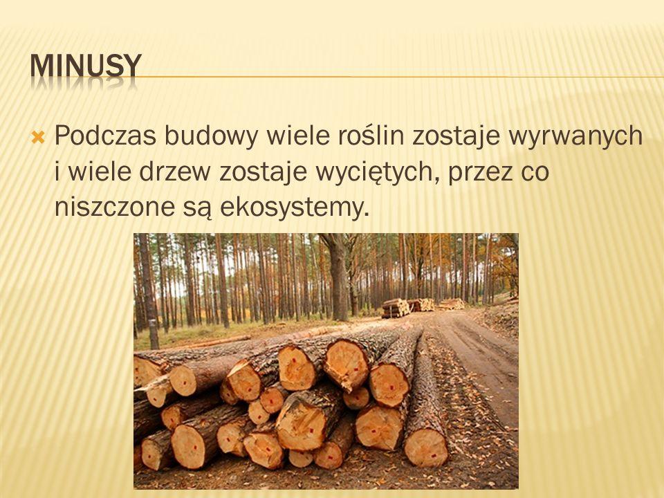  Podczas budowy wiele roślin zostaje wyrwanych i wiele drzew zostaje wyciętych, przez co niszczone są ekosystemy.