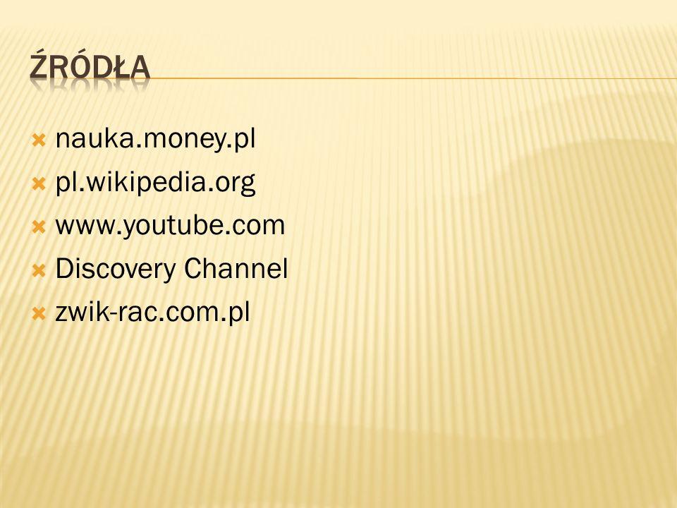  nauka.money.pl  pl.wikipedia.org  www.youtube.com  Discovery Channel  zwik-rac.com.pl