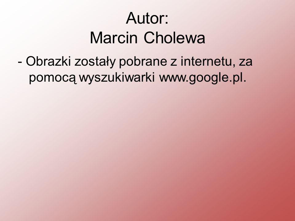 Autor: Marcin Cholewa - Obrazki zostały pobrane z internetu, za pomocą wyszukiwarki www.google.pl.