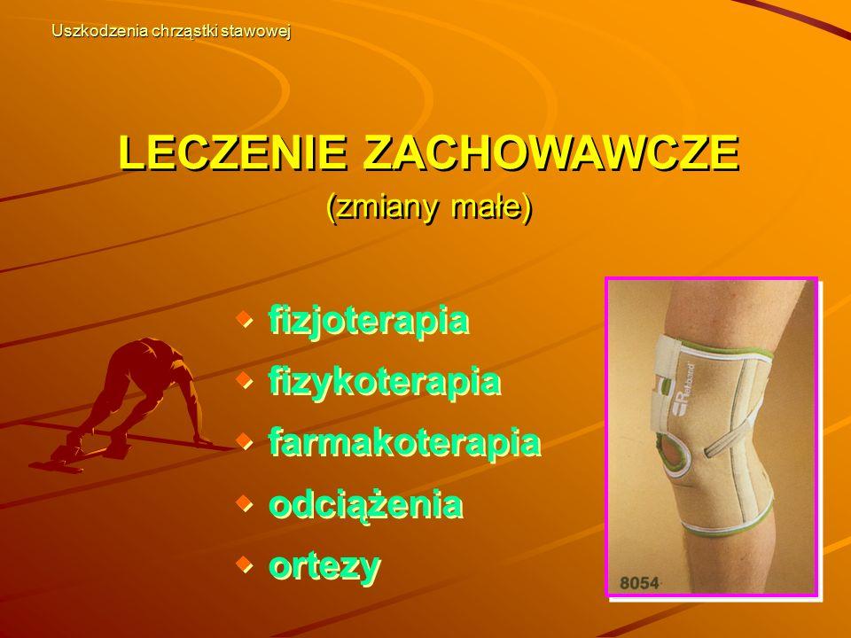 LECZENIE ZACHOWAWCZE (zmiany małe)  fizjoterapia  fizykoterapia  farmakoterapia  odciążenia  ortezy  fizjoterapia  fizykoterapia  farmakoterap