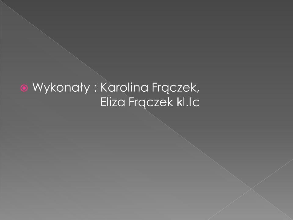  Wykonały : Karolina Frączek, Eliza Frączek k l.Ic