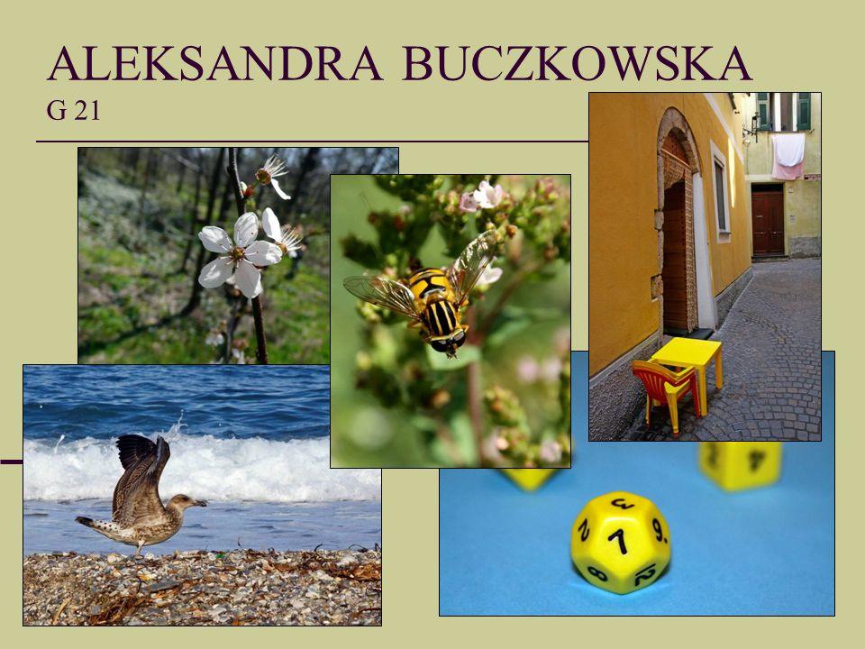 ALEKSANDRA BUCZKOWSKA G 21