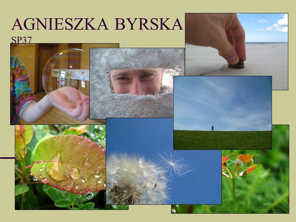 AGNIESZKA BYRSKA SP37