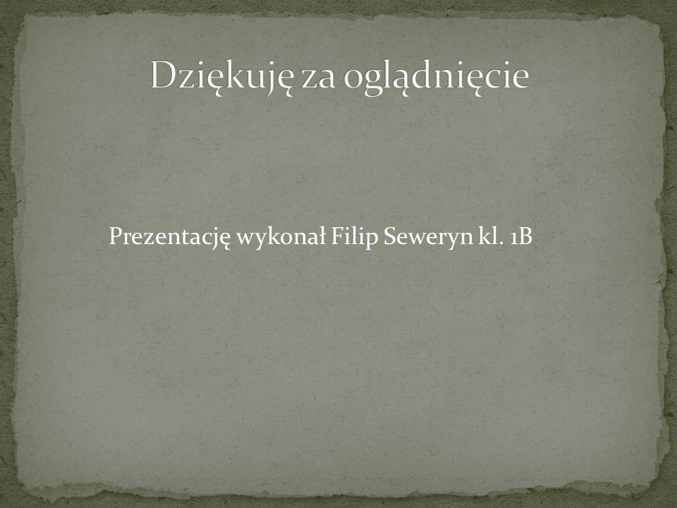 Prezentację wykonał Filip Seweryn kl. 1B
