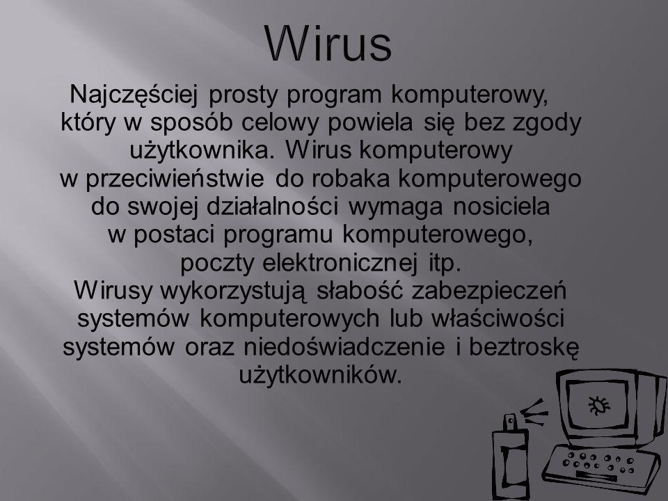 Najczęściej prosty program komputerowy, który w sposób celowy powiela się bez zgody użytkownika. Wirus komputerowy w przeciwieństwie do robaka kompute