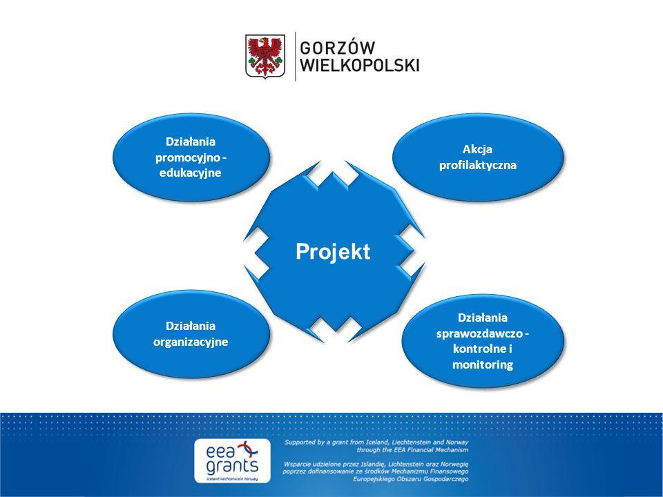 Działania sprawozdawczo - kontrolne i monitoring Działania promocyjno - edukacyjne Działania organizacyjne Akcja profilaktyczna Projekt