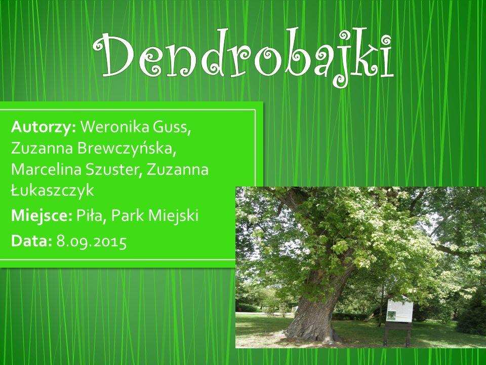 Autorzy: Weronika Guss, Zuzanna Brewczyńska, Marcelina Szuster, Zuzanna Łukaszczyk Miejsce: Piła, Park Miejski Data: 8.09.2015