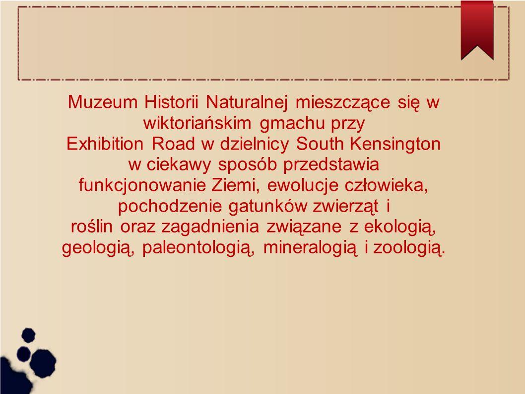 Muzeum Historii Naturalnej mieszczące się w wiktoriańskim gmachu przy Exhibition Road w dzielnicy South Kensington w ciekawy sposób przedstawia funkcj