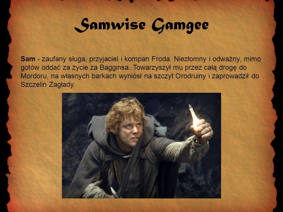 Samwise Gamgee Sam - zaufany sługa, przyjaciel i kompan Froda. Niezłomny i odważny, mimo gotów oddać za życie za Bagginsa. Towarzyszył mu przez całą d