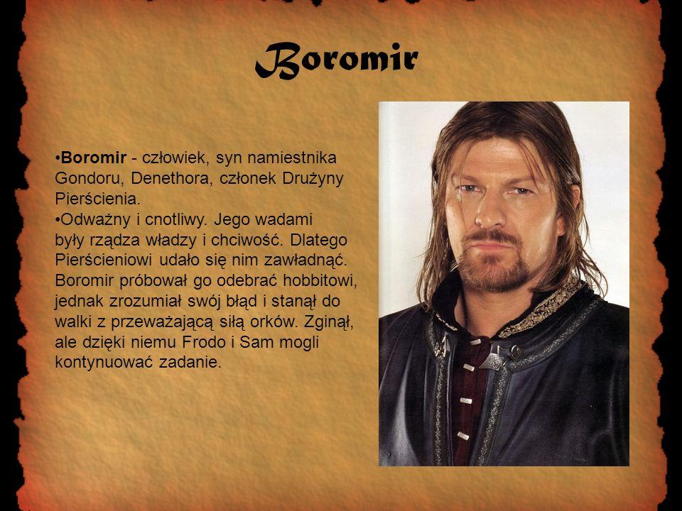 Boromir Boromir - człowiek, syn namiestnika Gondoru, Denethora, członek Drużyny Pierścienia. Odważny i cnotliwy. Jego wadami były rządza władzy i chci