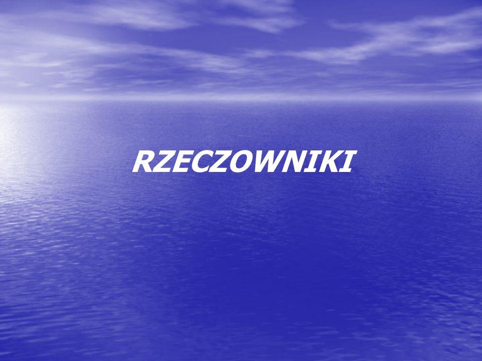 SINGULARIA TANTUM Do tej grupy można zaliczyć: nazwy przedmiotów niepoliczalnych: metal, ryż, powietrze; nazwy przedmiotów niepoliczalnych: metal, ryż, powietrze; określenia pojęć abstrakcyjnych: zawiść, duma, uznanie; określenia pojęć abstrakcyjnych: zawiść, duma, uznanie; nazwy geograficzne: Monako, Kilimandżaro; nazwy geograficzne: Monako, Kilimandżaro; nazwy zbiorowe: młodzież, bohema, igliwie, duchowieństwo.