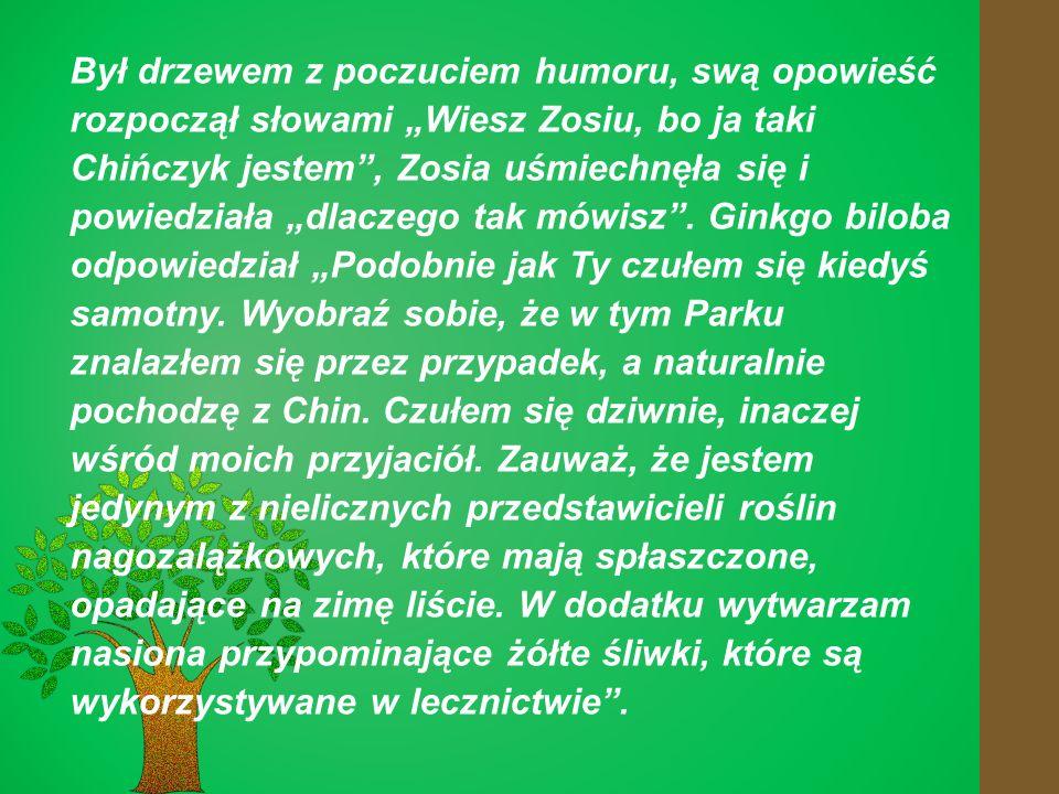 """Był drzewem z poczuciem humoru, swą opowieść rozpoczął słowami """"Wiesz Zosiu, bo ja taki Chińczyk jestem , Zosia uśmiechnęła się i powiedziała """"dlaczego tak mówisz ."""