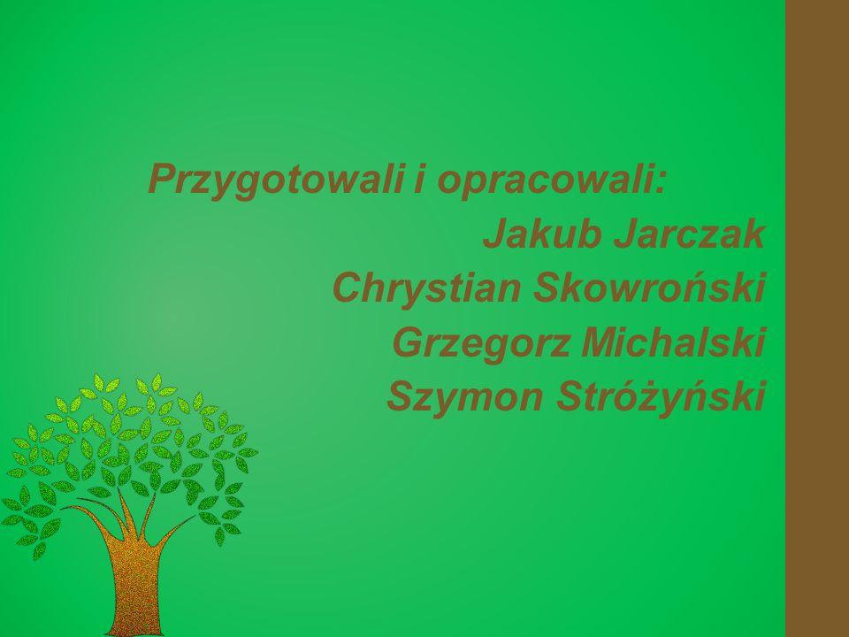 Przygotowali i opracowali: Jakub Jarczak Chrystian Skowroński Grzegorz Michalski Szymon Stróżyński