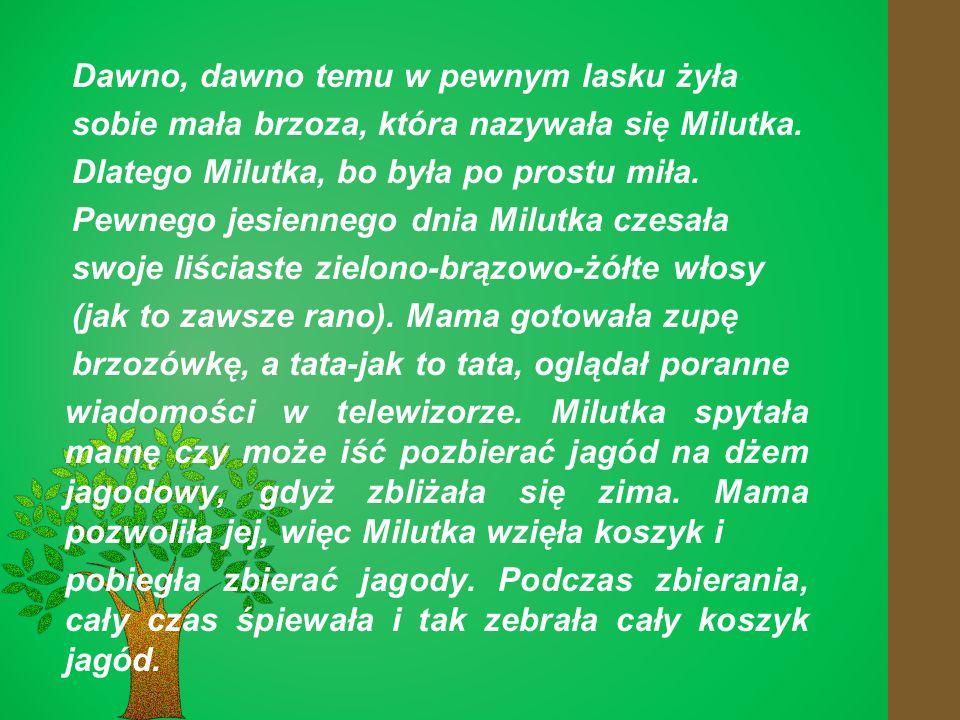 Dawno, dawno temu w pewnym lasku żyła sobie mała brzoza, która nazywała się Milutka.