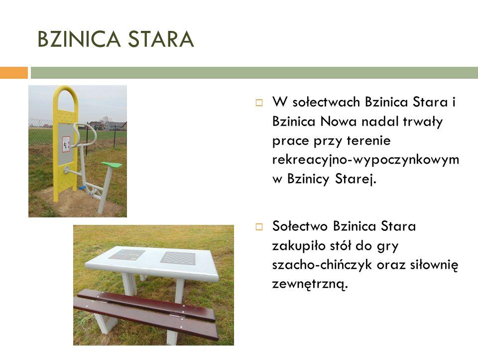 BZINICA STARA  W sołectwach Bzinica Stara i Bzinica Nowa nadal trwały prace przy terenie rekreacyjno-wypoczynkowym w Bzinicy Starej.