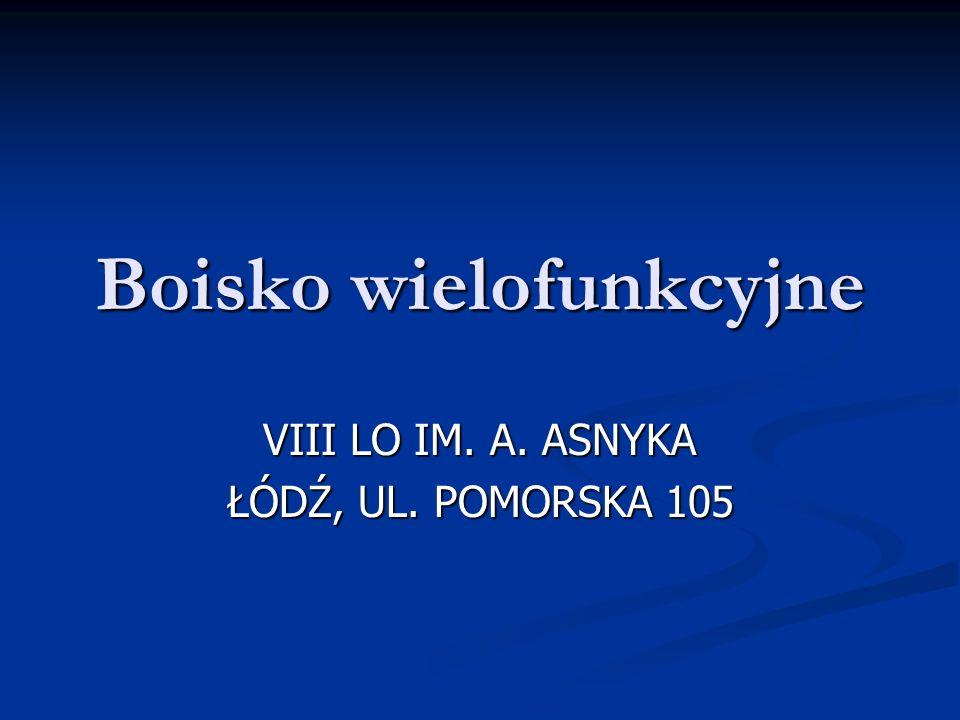 Boisko wielofunkcyjne VIII LO IM. A. ASNYKA ŁÓDŹ, UL. POMORSKA 105