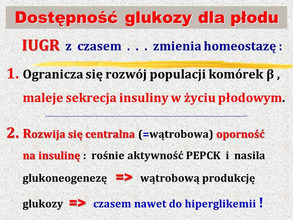 Dostępność glukozy dla płodu IUGR IUGR z czasem... zmienia homeostazę : 1. Ogranicza się rozwój populacji komórek β, maleje sekrecja insuliny w życiu