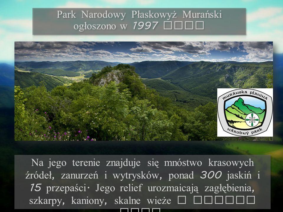 Na jego terenie znajduje się mnóstwo krasowych źródeł, zanurzeń i wytrysków, ponad 300 jaskiń i 15 przepaści.