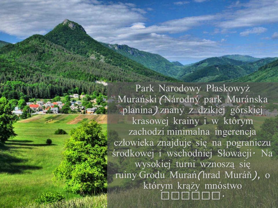 Park Narodowy Płaskowyż Murański ( N á rodný park Mur á nska planina ) znany z dzikiej górskiej krasowej krainy i w którym zachodzi minimalna ingerenc