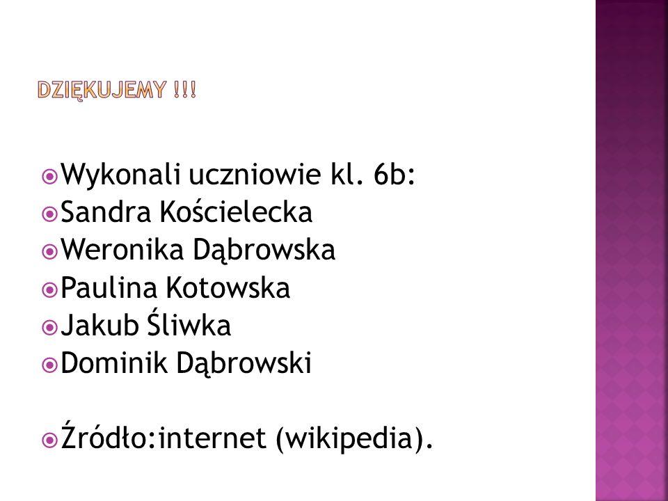  Wykonali uczniowie kl. 6b:  Sandra Kościelecka  Weronika Dąbrowska  Paulina Kotowska  Jakub Śliwka  Dominik Dąbrowski  Źródło:internet (wikipe