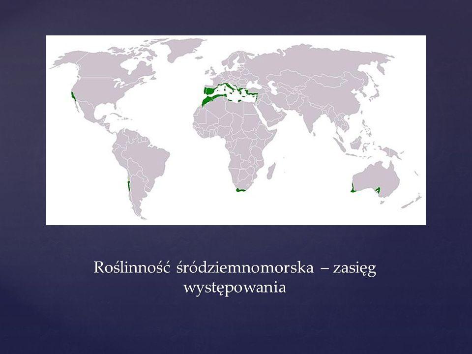 Roślinność śródziemnomorska – zasięg występowania