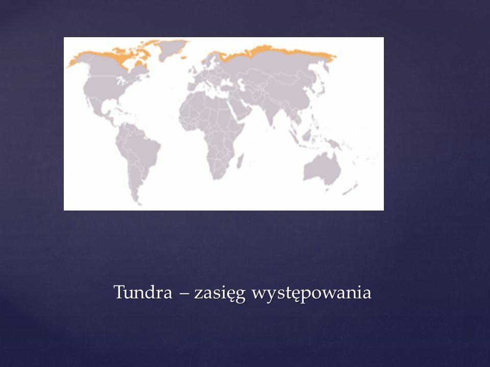 Tundra – zasięg występowania