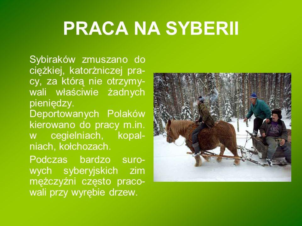 PRACA NA SYBERII Sybiraków zmuszano do ciężkiej, katorżniczej pra- cy, za którą nie otrzymy- wali właściwie żadnych pieniędzy. Deportowanych Polaków k