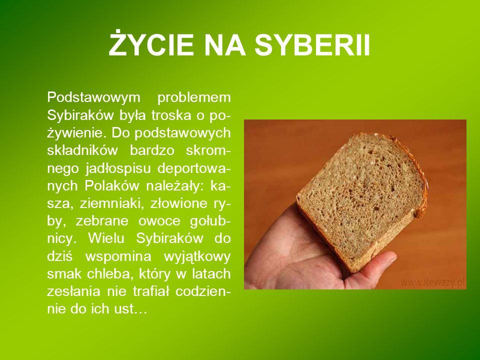 ŻYCIE NA SYBERII Podstawowym problemem Sybiraków była troska o po- żywienie. Do podstawowych składników bardzo skrom- nego jadłospisu deportowa- nych
