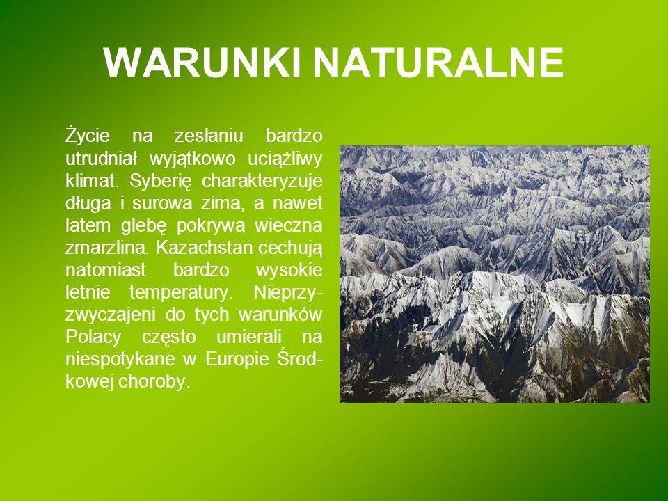 WARUNKI NATURALNE Życie na zesłaniu bardzo utrudniał wyjątkowo uciążliwy klimat. Syberię charakteryzuje długa i surowa zima, a nawet latem glebę pokry