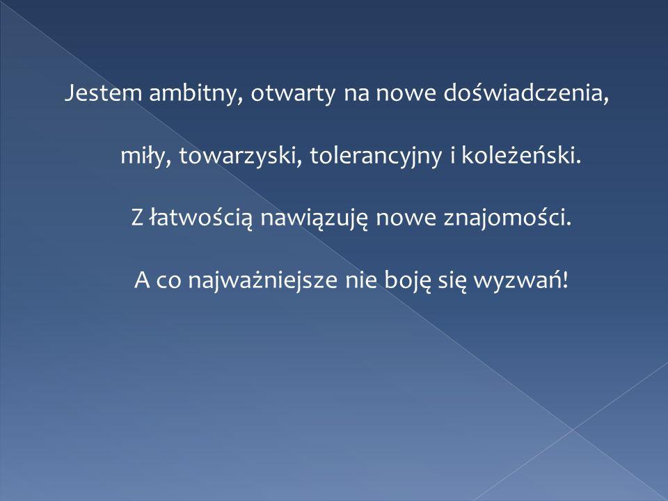 Jestem ambitny, otwarty na nowe doświadczenia, miły, towarzyski, tolerancyjny i koleżeński.