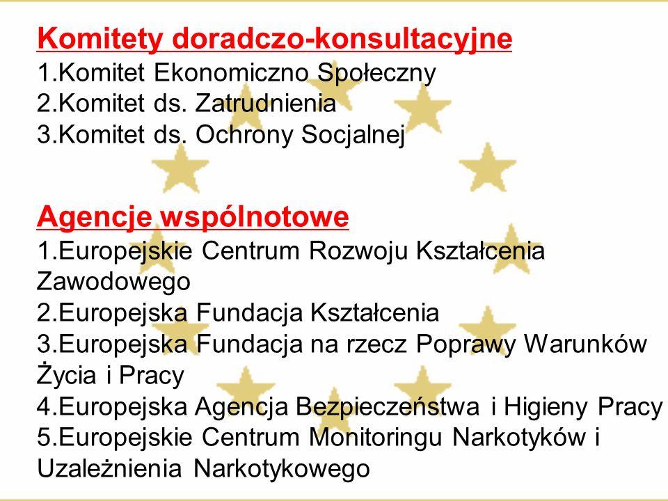 Komitety doradczo-konsultacyjne 1.Komitet Ekonomiczno Społeczny 2.Komitet ds. Zatrudnienia 3.Komitet ds. Ochrony Socjalnej Agencje wspólnotowe 1.Europ